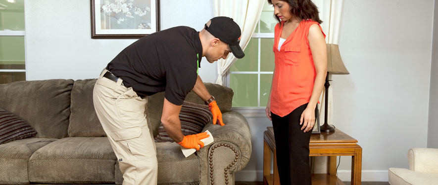Wilmington, DE carpet upholstery cleaning